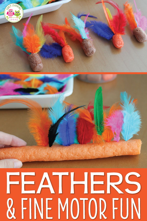 Are you looking for fun fine motor activities for kids? Here is a really simple feather fine motor activity that your kiddos will enjoy.  You only need a couple of supplies to keep your kids' fingers busy in the sensory bin.  Activities are perfect for preschool, pre-k, and OT.  This is a great addition if you are teaching a bird theme, turkeys theme, or Thanksgiving theme unit. #preschool #finemotoractivities
