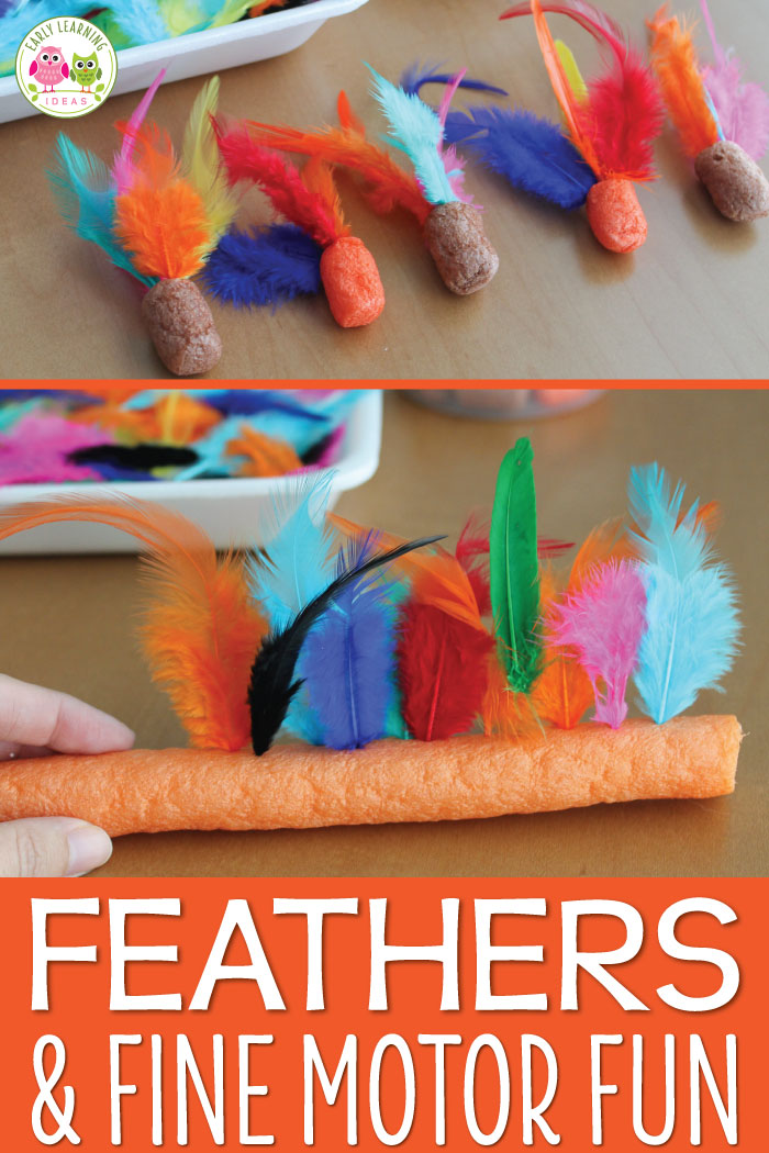 Here is a really simple feather fine motor activity that your kiddos will enjoy.  You only need two supplies for this feathery fun...perfect for a birds theme or turkey theme unit.  Activities are perfect for preschool, pre-k, and OT.  Birds theme unit, spring theme unit, turkey theme unit, Thanksgiving theme unit and lesson plans