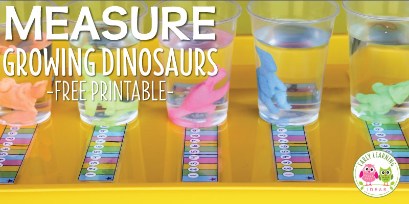Measurement Activities for Preschoolers : Measure Growing Dinosaurs