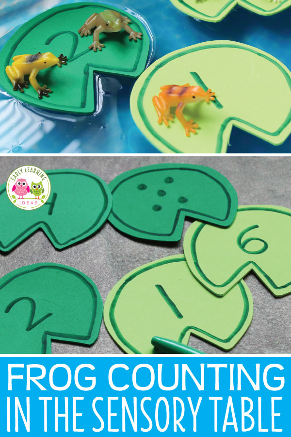 Young kids will enjoy this frog counting activity. Use my free printable template to make numbered lily pads. Kids will enjoy using the number lily pads in a sensory bin, water table, or a container filled with water. Perfect for your frog theme, pond theme, or spring theme unit and lesson plans in your preschool or pre-k classroom. I enjoy using these with water beads for sensory play...fun water play learning activity for kids. Frog life cycle. Frog hands-on learning  #preschool #preschoolmath