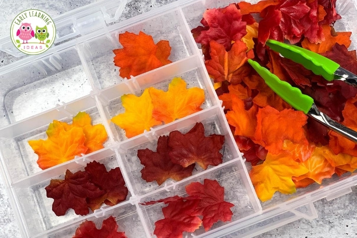 fine motor math sorting activity with fall leaves