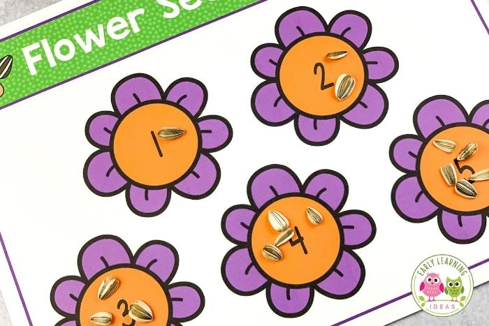 flower seed counting activity