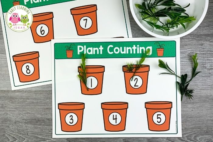 counting plants activity for preschoolers