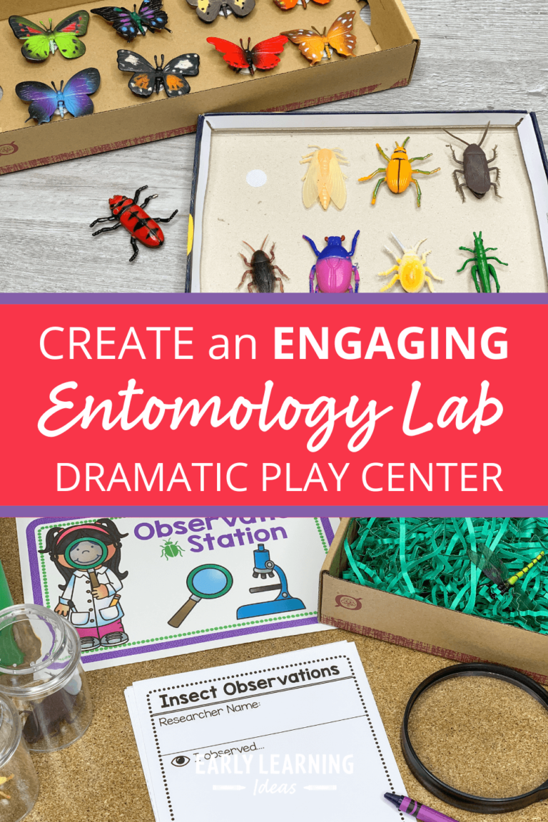 An Insect Theme Dramatic Play Area:  How to Make an Entomology Lab