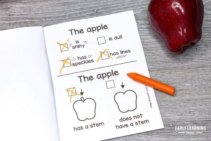 apple science activities