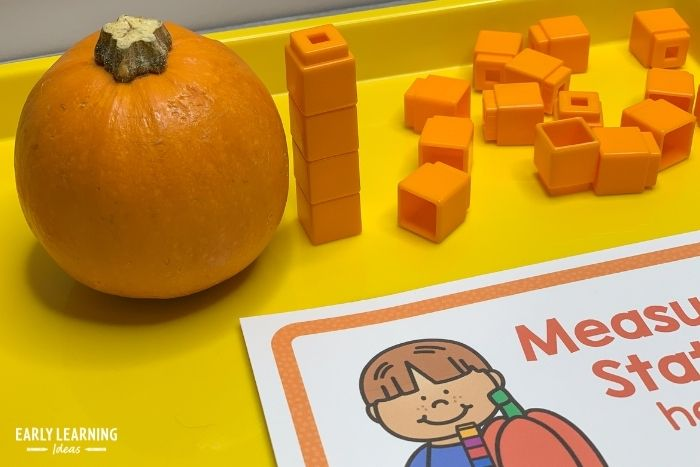 Another way to measure the pumpkin is to use blocks to get data about the height.