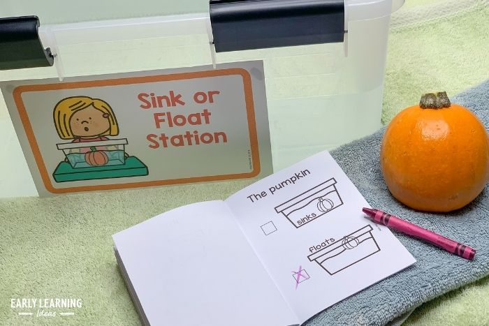 Another pumpkin science activity is to check the density of a pumpkin.  Does it sink or float?