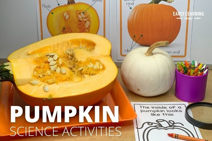 pumpkin science activities that are fun for kids