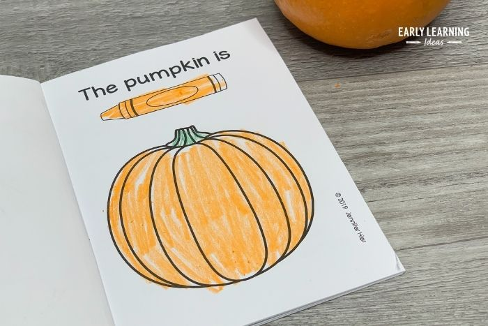 Scientist study and classify things.  Kids can do the same thing with their pumpkins.  Kids can record the color of their pumpkin in their pumpkin investigation book.