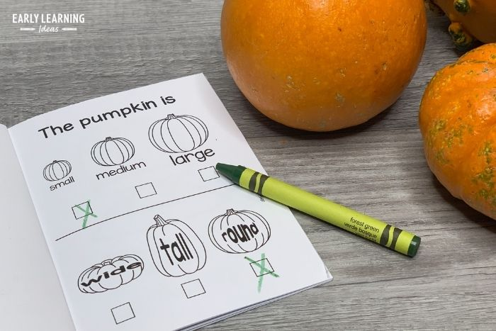 Kids can identify the size of their pumpkin and the shape of their pumpkin in the pumpkin science investigation book.