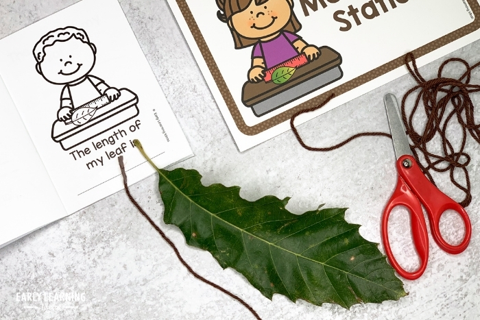 measuring a leaf with a piece of yarn