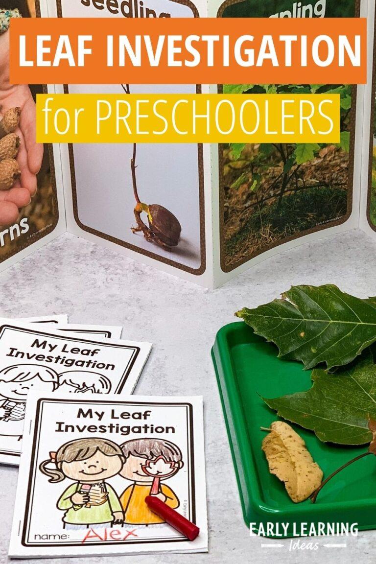 Preschool Leaf Activities: How to Investigate Leaves